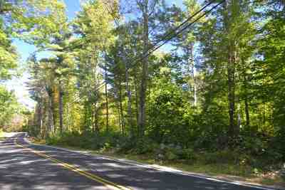 Strafford County Residential Lots & Land For Sale: 117 Young Rd.