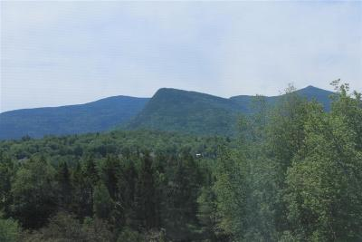 Waterville Valley Rental For Rent: 28 Packards Road #538
