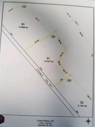 Center Harbor Residential Lots & Land For Sale: 51 Newman Rd
