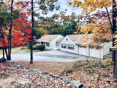 Center Harbor Single Family Home For Sale: 59 Piper Hill Road