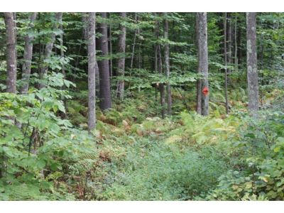 Meredith Residential Lots & Land For Sale: Birch Hill Road