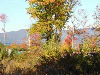 Center Harbor Residential Lots & Land For Sale: Newman Lot W/Lodge Road