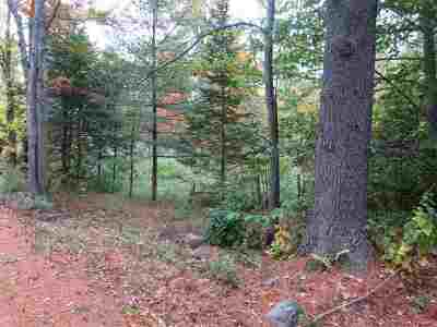 Moultonborough Residential Lots & Land For Sale: Lee Road