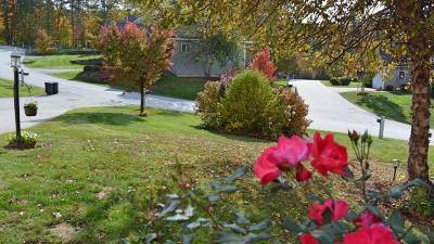 Laconia Single Family Home Active Under Contract: 119 Hickory Stick Lane