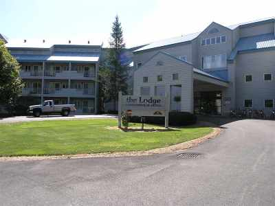 Lincoln Condo/Townhouse Active Under Contract: 36 Lodge Road #C-313