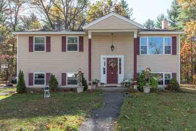 Derry Single Family Home For Sale: 5 Al Street