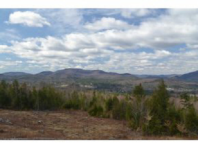 Campton Residential Lots & Land For Sale: Off Beaver Brook Road