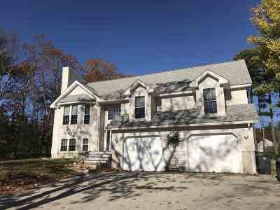 Hooksett Single Family Home For Sale: 19 Morningside Drive