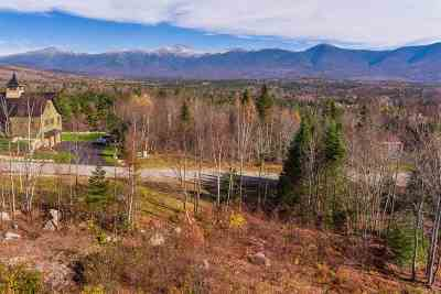 Carroll Residential Lots & Land For Sale: Mt. Adams Lane #22