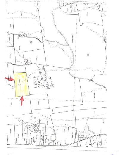Addison County Residential Lots & Land For Sale: 820 Carp Cole Road