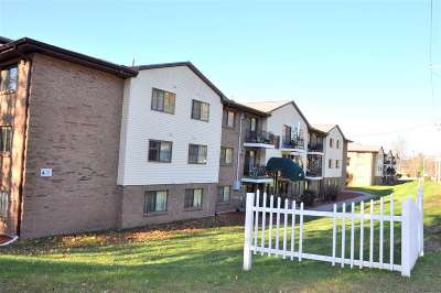 Hooksett Condo/Townhouse For Sale: 124 Mammoth Road #2