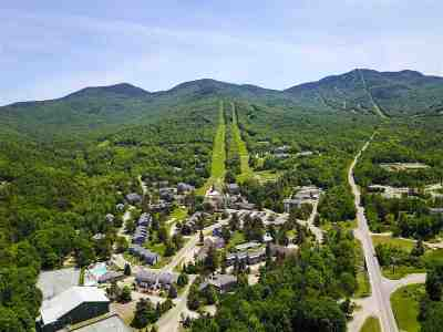 Cambridge Condo/Townhouse For Sale: 4323 Vt 108 South Highway #Hakone 6