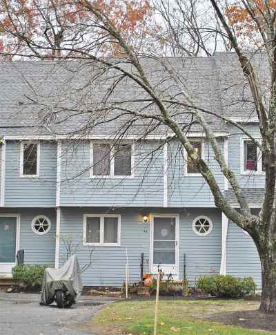Merrimack Condo/Townhouse For Sale: 46 Merrimack Drive