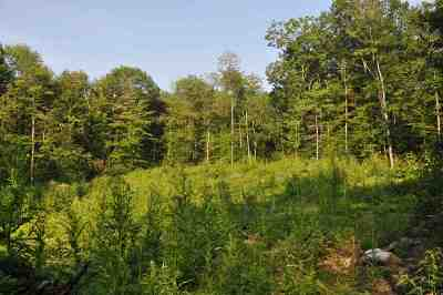 Merrimack County Residential Lots & Land Active Under Contract: Bow Bog And Robinson Road