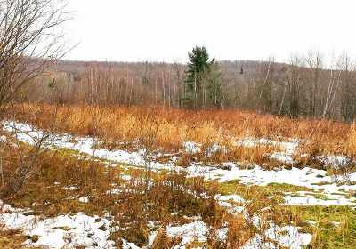 Berkshire Residential Lots & Land For Sale: 1334 Ayers Hill Rd Road