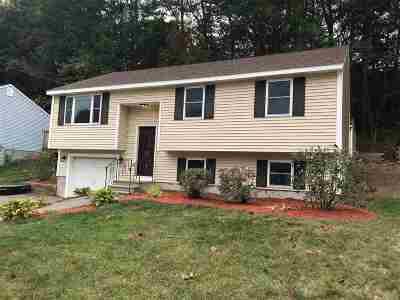 Nashua Single Family Home For Sale: 28 Syracuse Road