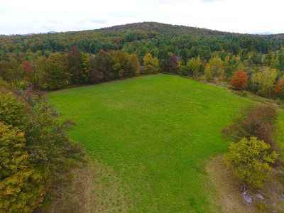 Berkshire Residential Lots & Land For Sale: 4629-3 Watertower Road