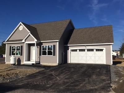 Nashua Single Family Home For Sale: 1 Caleb Road #1