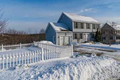 Hudson Single Family Home For Sale: 47 Flying Rock Road