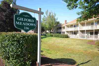 Gilford Condo/Townhouse For Sale: 336 Intervale Rd - Unit B3 #B3