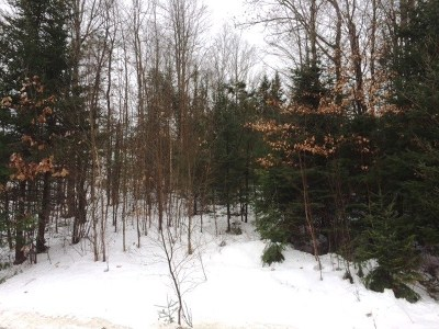 Littleton Residential Lots & Land For Sale: Point Of View Drive