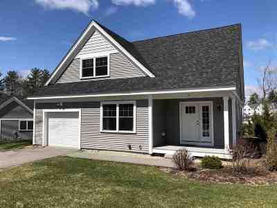 Strafford County Single Family Home For Sale: 9 Britton Lane