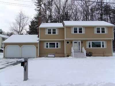 Nashua Single Family Home For Sale: 10 Hampton Drive