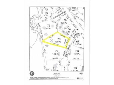 Gilford Residential Lots & Land For Sale: 11 Escarol Lane
