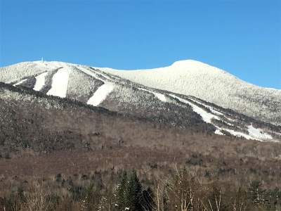 Waterville Valley Single Family Home For Sale: 36 Snows Mountain Road