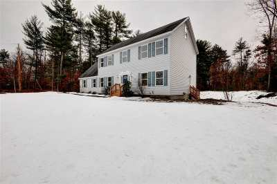 Londonderry Single Family Home For Sale: 73 Hall Road