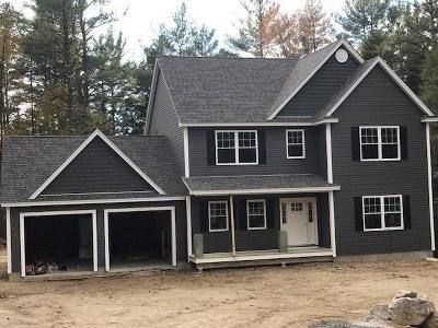 New Boston Single Family Home For Sale: Pheasant Lane #75-1