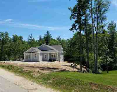 Hollis Single Family Home For Sale: 14 Keyes Hill Road