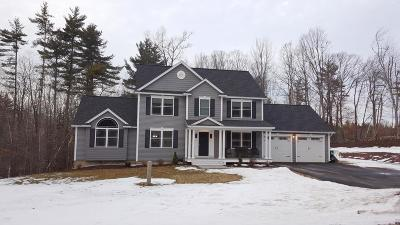 New Boston Single Family Home For Sale: 9 McCurdy Road