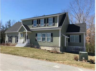 Dover Single Family Home For Sale: 16 Lika Drive