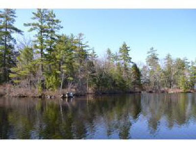 Moultonborough Residential Lots & Land For Sale: Lot 65.3 Gansy Island Island
