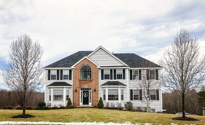 Windham Single Family Home For Sale: 20 Ryan Farm Road