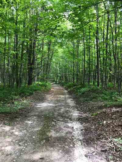 Jericho Residential Lots & Land For Sale: Vt 296 Browns Trace Road