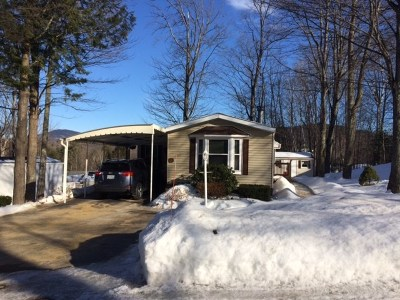 Laconia Single Family Home For Sale: 201 Sandhurst Drive