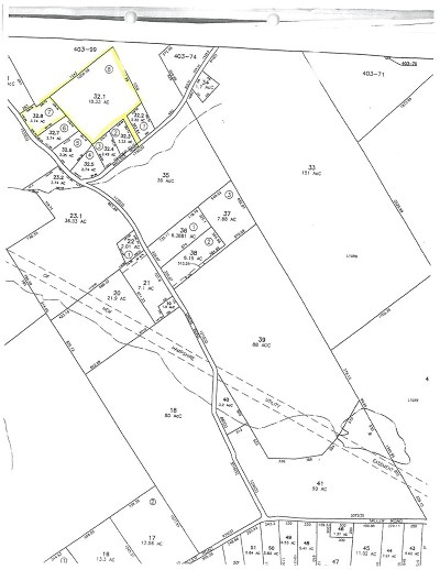 Dalton Residential Lots & Land For Sale: Wallace 32.8 And 32.1 Road