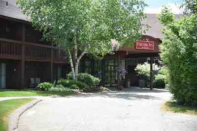 Belknap County Condo/Townhouse For Sale: 17 Harris Shore 407-A Road #407 A
