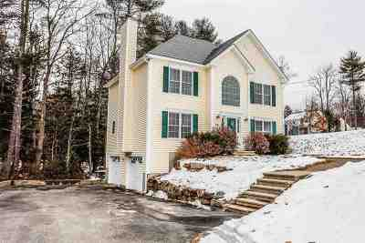 Milford Single Family Home Active Under Contract: 246 Badger Hill Drive