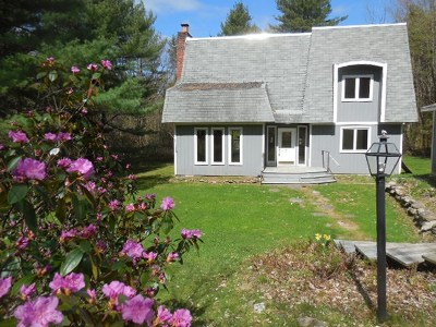 Westford Single Family Home For Sale: 82 Birch Ridge Road