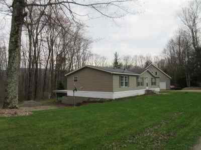 Hinesburg Single Family Home For Sale: 41 Majestic Lane