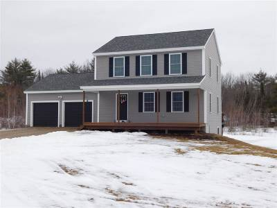 Carroll County Single Family Home For Sale: 135 Village Valley Drive