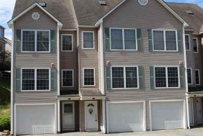 Hudson Condo/Townhouse Active Under Contract: 25b Chandler Court