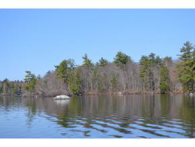 Moultonborough Residential Lots & Land For Sale: Lot 65.4 Gansy Island