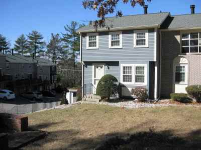 Nashua Condo/Townhouse Active Under Contract: 120 Cannongate Iii Road