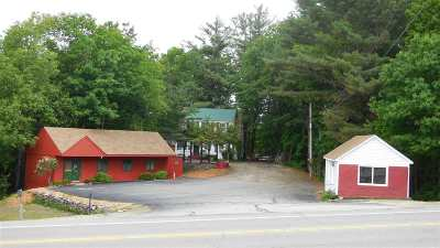 Newbury Single Family Home For Sale: 1387 Route 103 Route