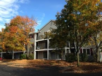 Concord Condo/Townhouse For Sale: 120 Fisherville Rd #57