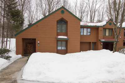 Woodstock  Condo/Townhouse For Sale: 32 Riverfront Drive #301